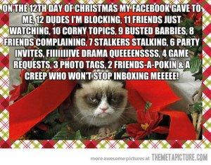 Facebook-And-The-12-Days-Of-Christmas-Grumpy-Cat-Style-Funny-Pic